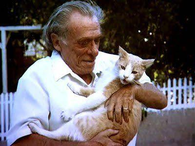 "Caminos del viento: ""Cats are my teachers"". Bukowski."