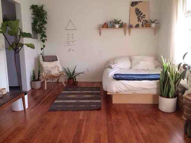 like - the natural dark wood floor, the use of colour, the big round plant pots