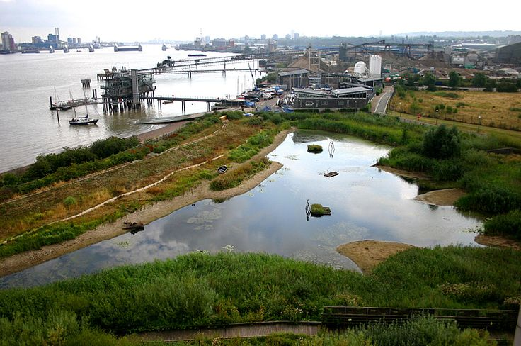 Greenwich Penisula Ecology Park in East London