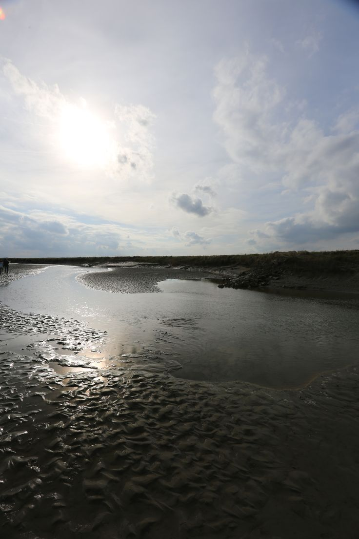 Het Verdronken Land van Saeftinghe