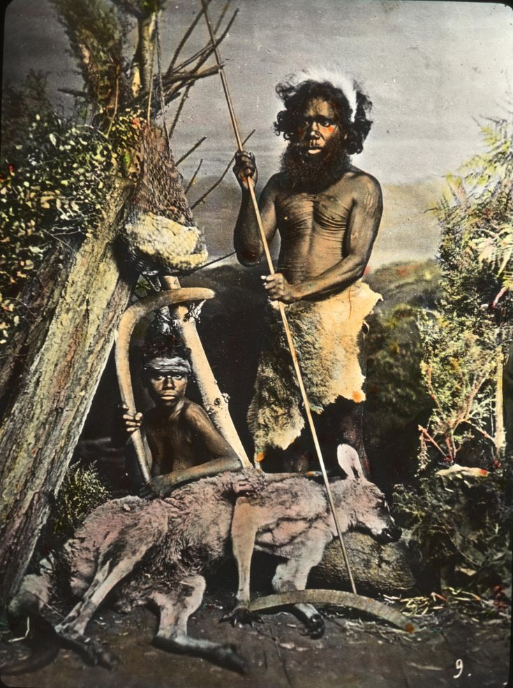 Aboriginals, are people whose ancestors were indigenous to the Australian continent— that is, to mainland Australia or to the island of Tasmania—before British colonisation of the continent began in 1788.
