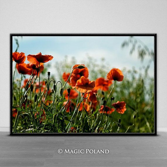 Poppies Digital Photography Printable Wall Art Instant