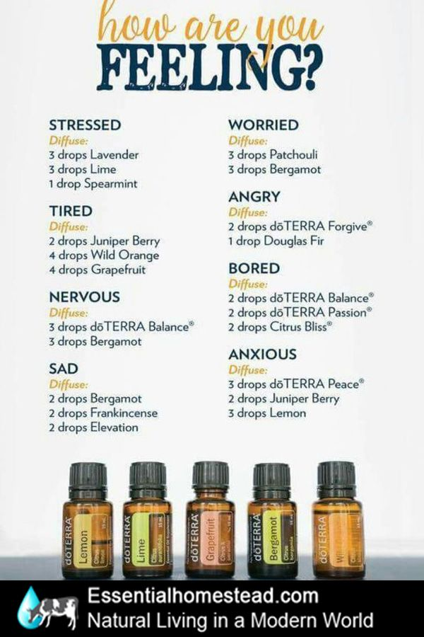 How are you feeling?  doterra diffuser blends for every mood.  Includes forgive, balance, peace, passion, citrus bliss, elevation, juniper berry, grapefruit, orange, lavender, spearmint, lime and more.  http://essentialhomestead.com/naturalliving/how-do-i-get-started/
