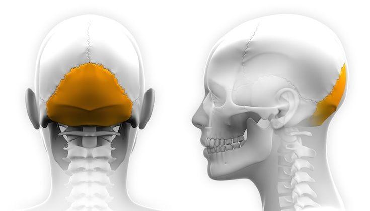 Occipital Neuralgia - http://paindoctor.com/videos/occipital-neuralgia/ #paindoctor #painmedicine #chronicpain
