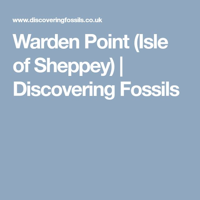 Warden Point (Isle of Sheppey) | Discovering Fossils