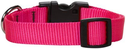 Lupine Custom Embroidered Dog Collar - Pink - 1/2 x 10-16 in