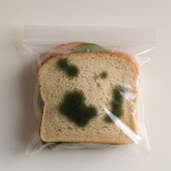 Anti-Theft Lunch Bags are zipper bags that have green splotches printed on both sides, making your freshly prepared lunch look spoiled. Don't let a sticky-fingered coworker or schoolyard bully get away with lunch theft again!