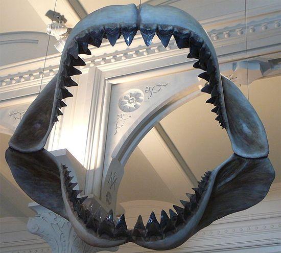 Megalodon: The Monster Shark's Dead – Phenomena: Laelaps
