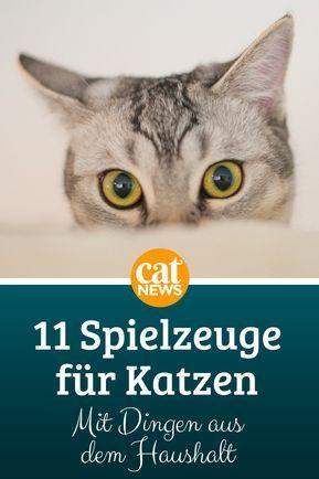 11 einfache Katzenspielzeuge – selbst gemacht, mit Dingen aus dem Haushalt