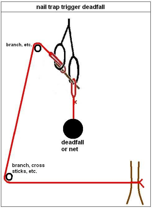 paiute deadfall trap instructions