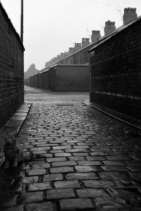 """Moss Side, with cat"" by Fray Bentos: 09 Road, Council Estate Photography, Urban Landscapes, Beautiful Places, Mucky Manchester, Landscapes Pretty, Coucil Estate, Council Estates"