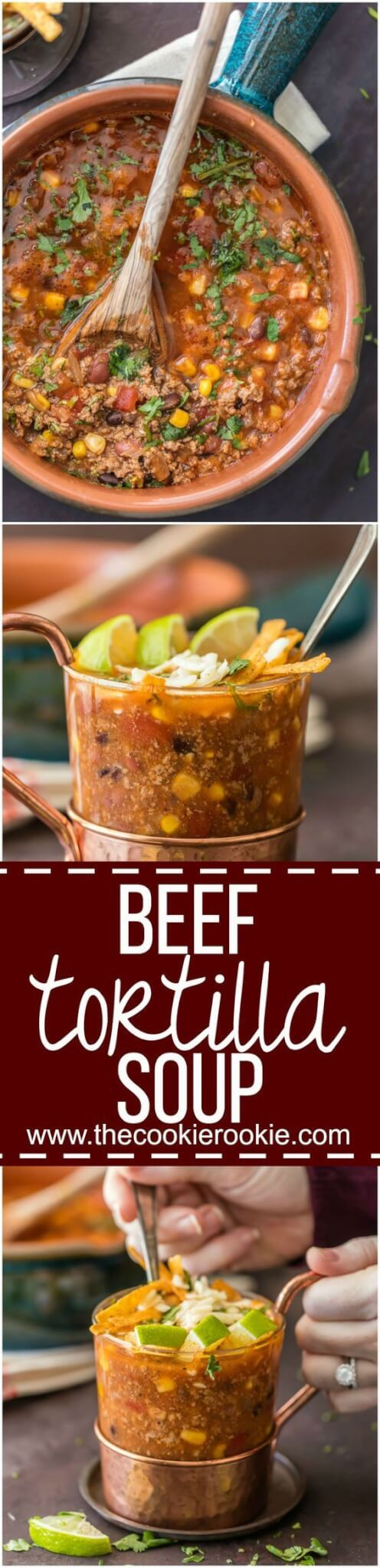 awesome Beef Tortilla Soup