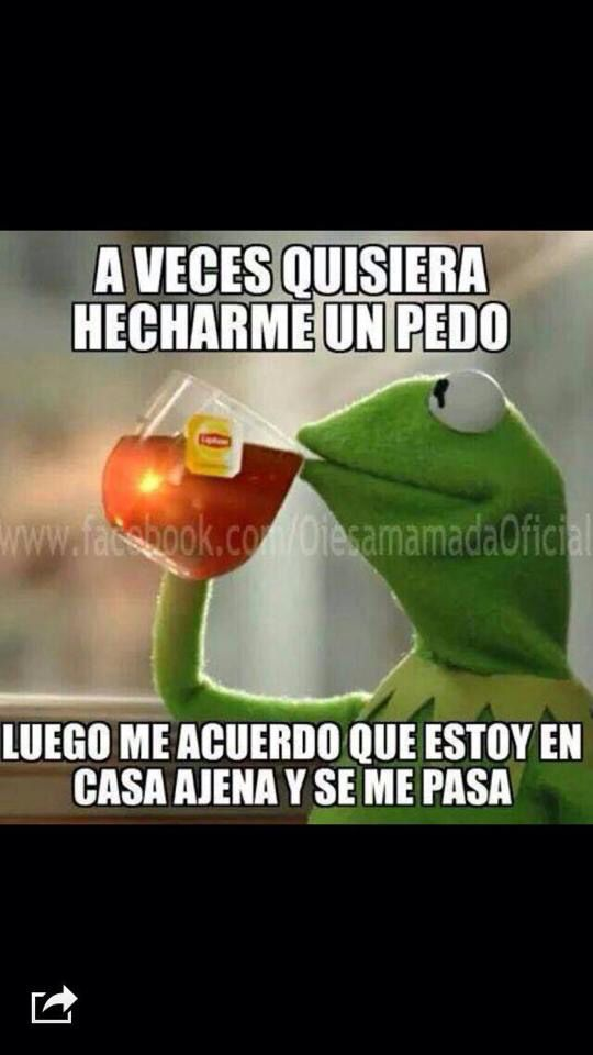 Rana Rene meme.