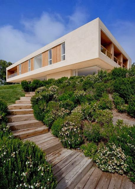Timber steps leading to house on the hill #steps #timber