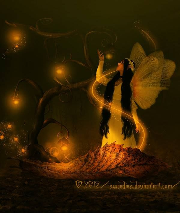 lighting up the darkness fairy