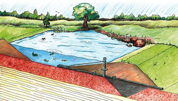 Dug and dam pond construction very cool pinterest for Pond dam design