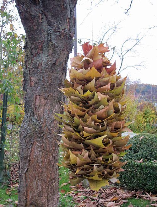 Blätterfaden für Nützlinge im Garten
