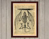 Bat skeleton print Rustic decor Cabin Vintage Retro poster Dictionary page Home interior Wall 0002
