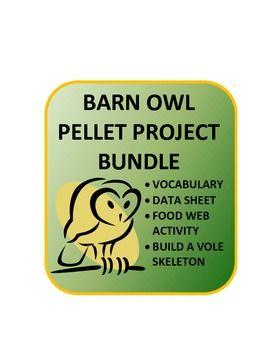 Barn Owl Pellet Unit: Data sheet, food web, analysis, vole ...