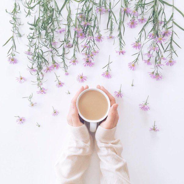 Latte in bloom