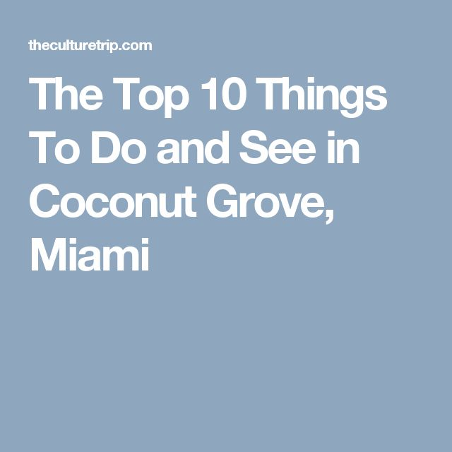 The Top 10 Things To Do and See in Coconut Grove, Miami