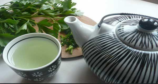 Le thé de persil a de nombreux avantages ; il se prescrit depuis des années pour faciliter les cycles menstruels, le thé de persil peut être utilisé.