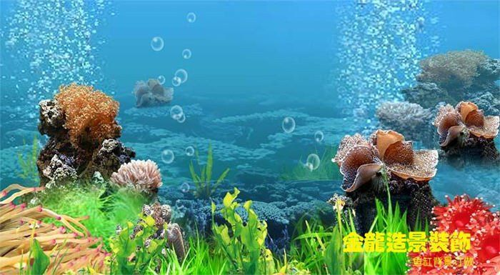 It's just a photo of Fish Tank Background Printable throughout cartoon