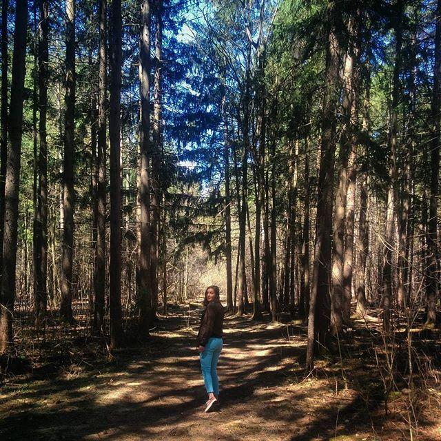 L'Arboretum Morgan   Sainte-Anne-de-Bellevue  25 km de sentiers