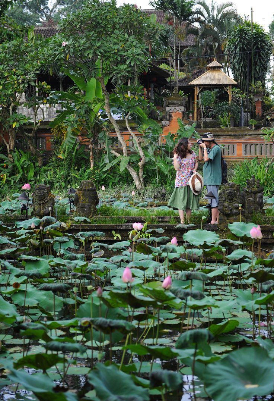 Lotus Cafe Ubud, Bali.  http://www.exploras.net/balin-maagisin-paikka-on-ubud