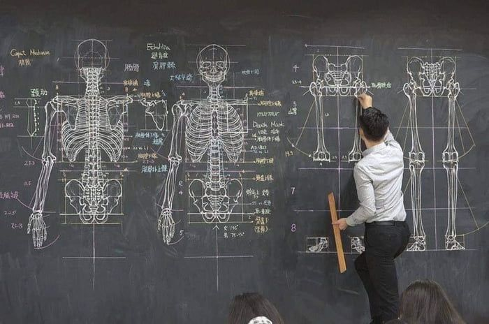 Anatomy Teacher With His Drawing Lecture On A Chalkboard Anatomy Teacher Anatomy Text Image