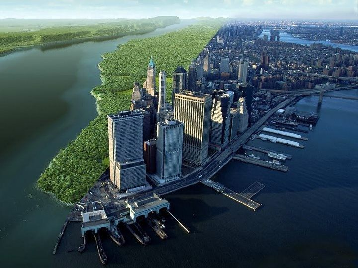 Welikia Project What NYC Looked Like in 1609 | Gardenista