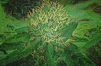 """<<<<<< """"Early, In the Sea of Green"""" See more #Cannabis Fine Art Paintings @ www.MaritopianLife.com #MMOT #MMJ"""