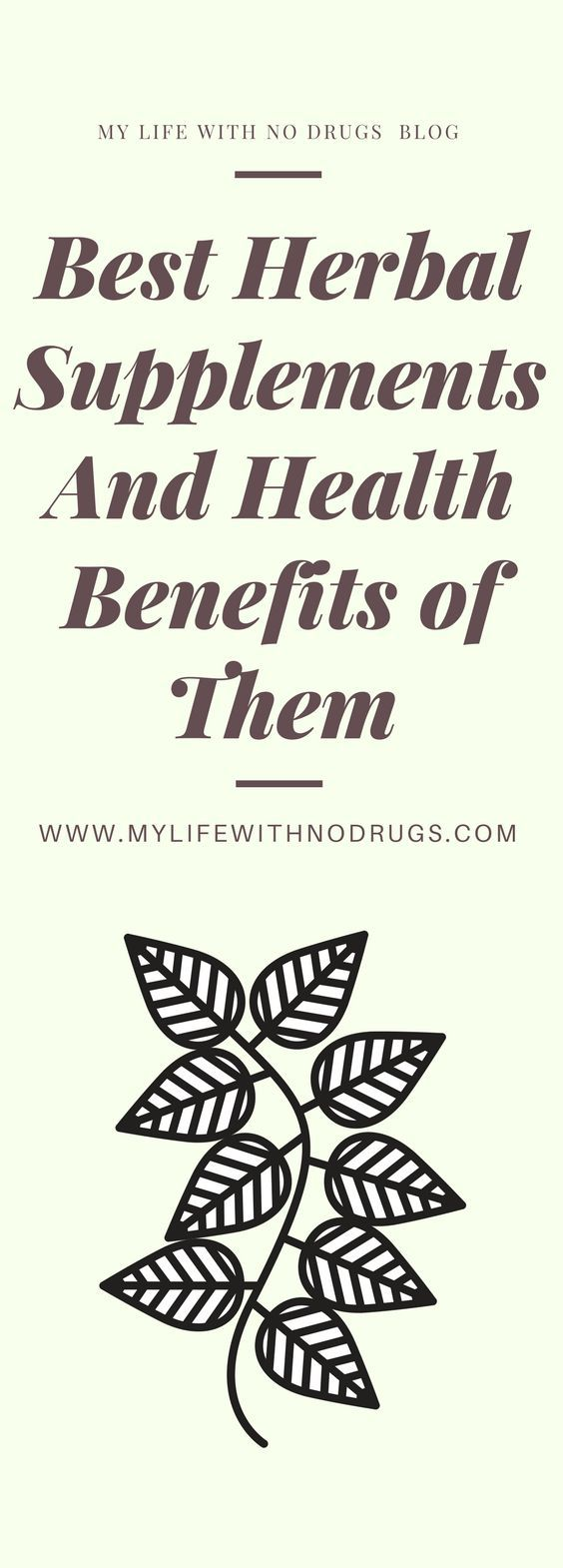 Best Herbal Supplements And Health Benefits of Them
