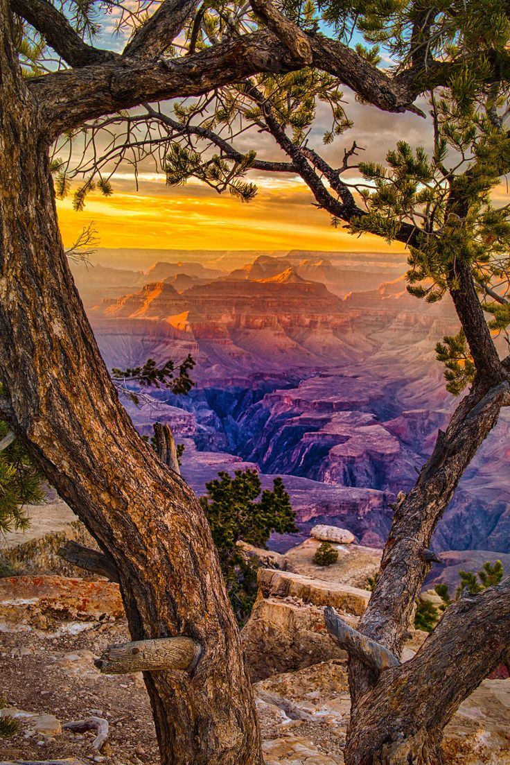 View from Yaki Point on the South Rim of the Grand Canyon in Arizona Follow @travelgurus for the best Tumblr Images