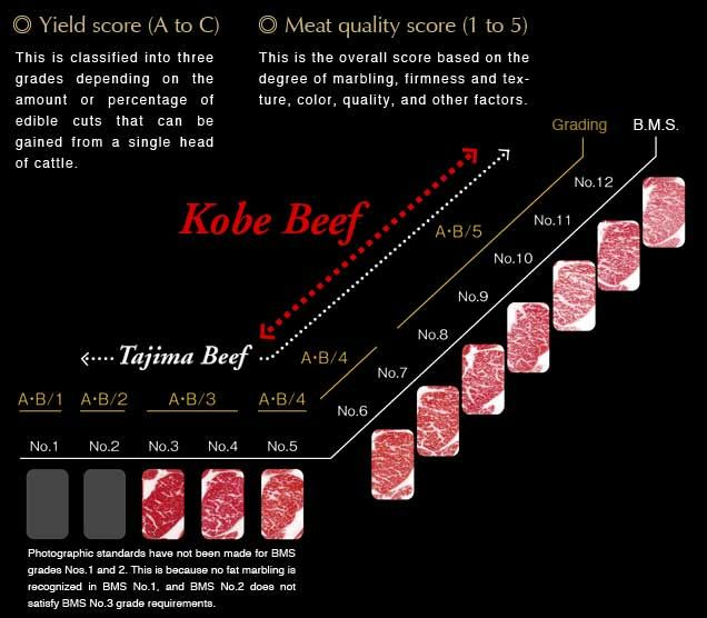 Yield and meat quality scoring system for Kobe beef (courtesy of Kobe-Niku.jp)