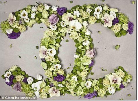 #chanel#Clara Hallencreutz#art#flowers