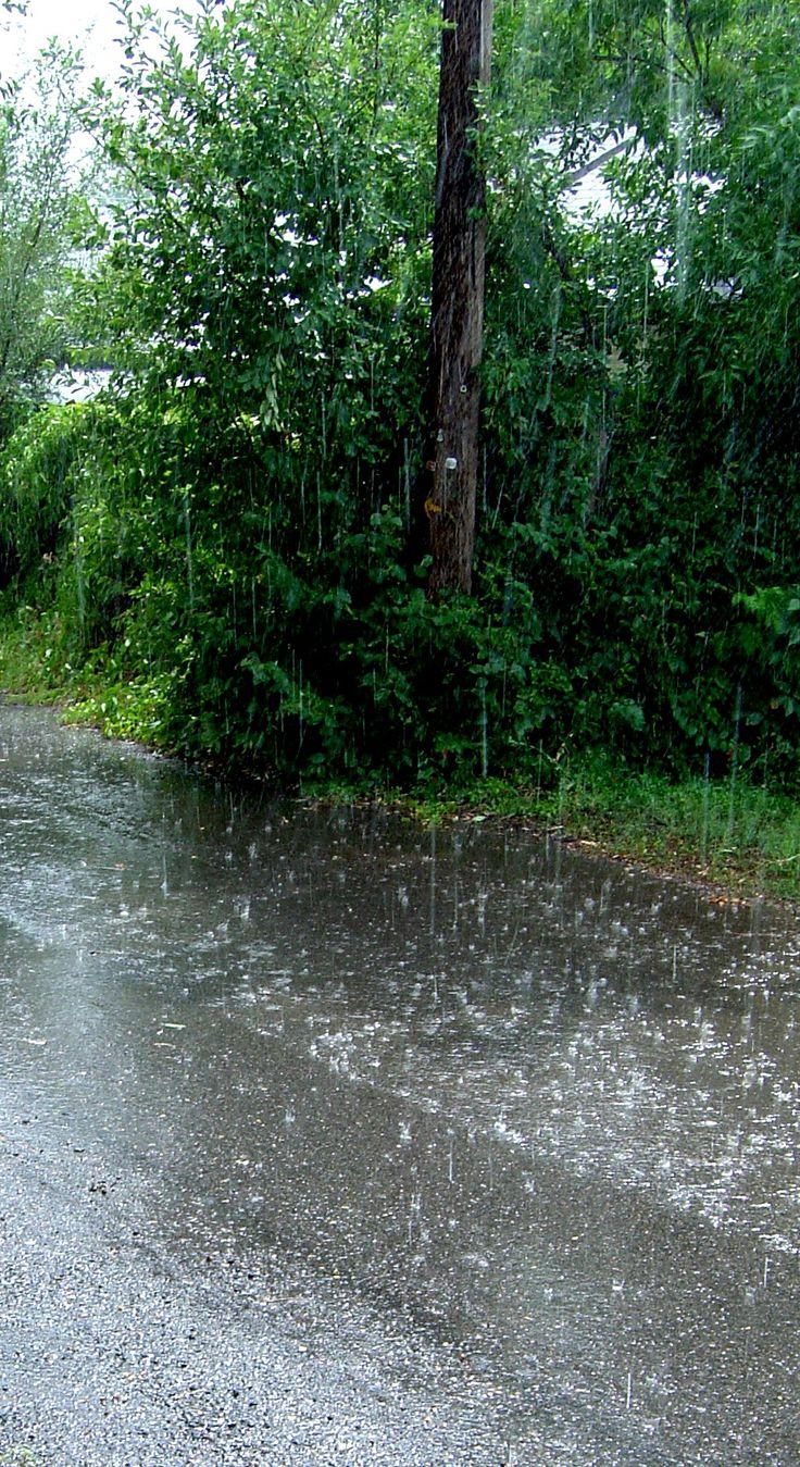 'we're like a summer rain.'