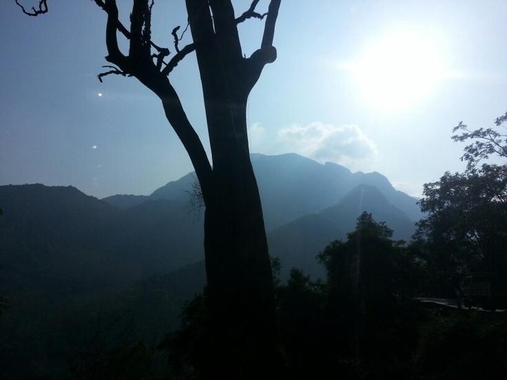 The 'Nilgiris'.. India's blue mountains