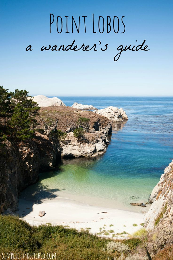 Point Lobos- a wanderer's guide to the California state reserve near Monterey