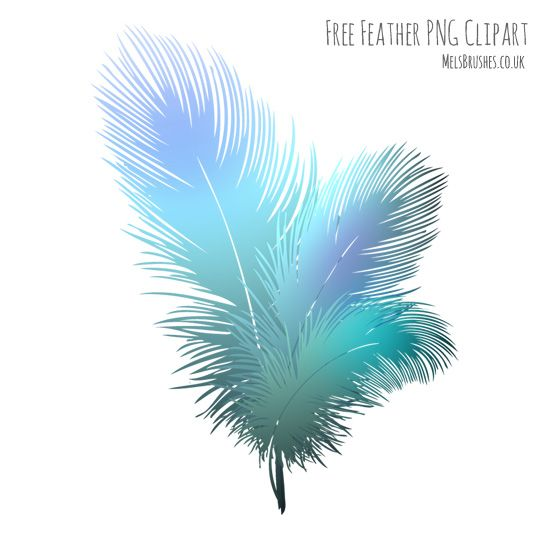 falling feathers png - 916×898