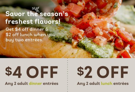 The 25 Best Ideas About Olive Garden Lunch Coupons On