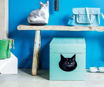 Hoe verberg ik de kattenbak? Ook leuk als katten mand! Wellicht een grote kop uitzagen op een zijkant.