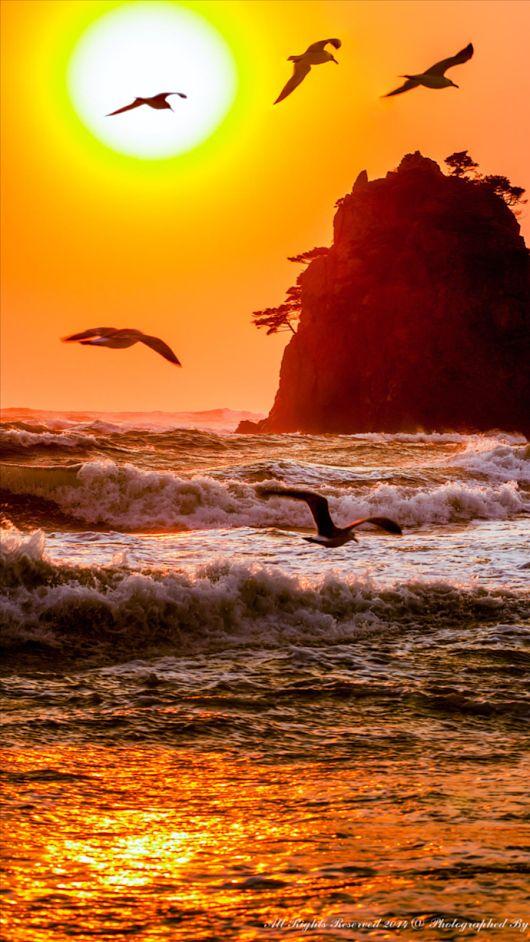 Ocean sunset http://luckybro.com/