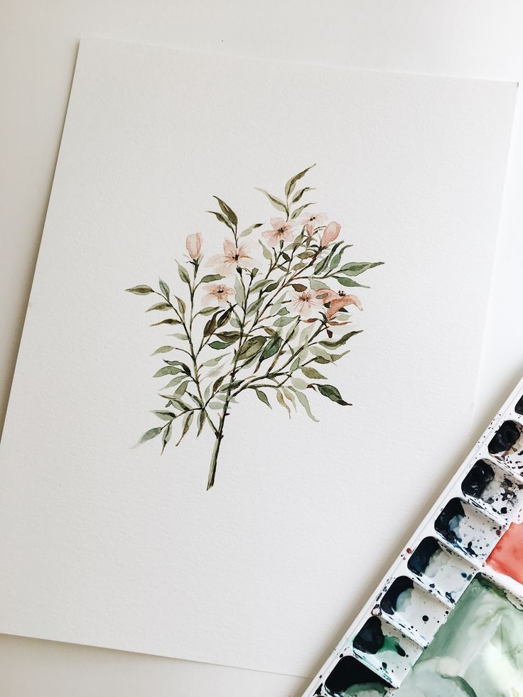 Delicate Floral Branch Watercolor Painting – 9 x 1…