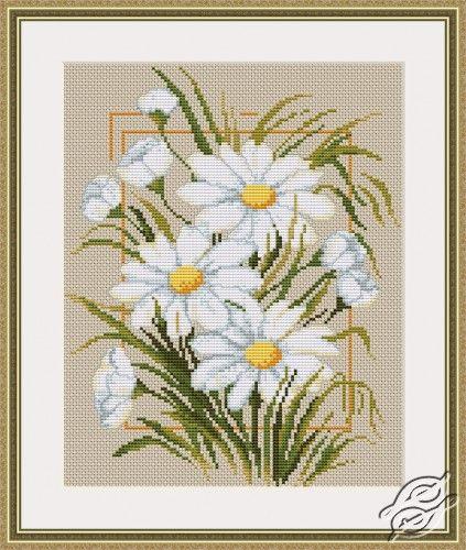 Daisies - Cross Stitch Kits by Luca-S - B289