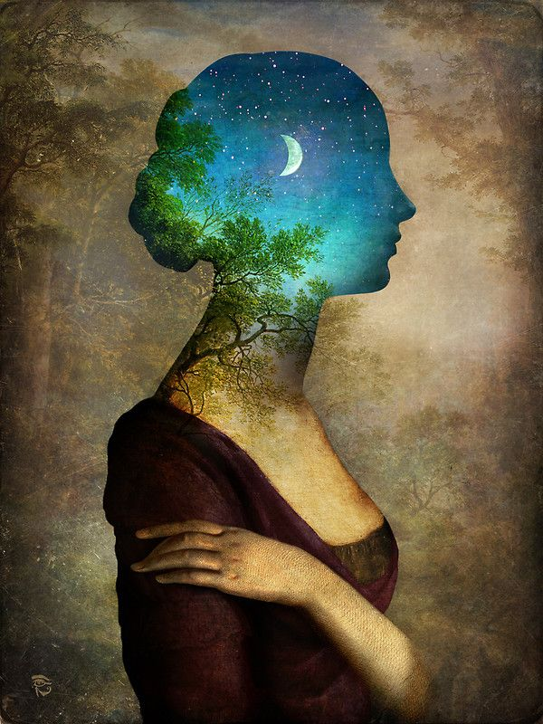 A Midsummer Night's Dream by Christian Schloe http://www.redbubble.com/people/christianschloe