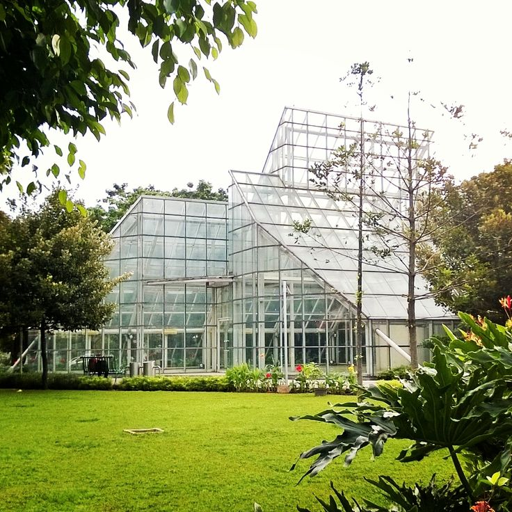 """The Greenhouse"" - Photos taken with Nokia Lumia 920 using Instagram app"