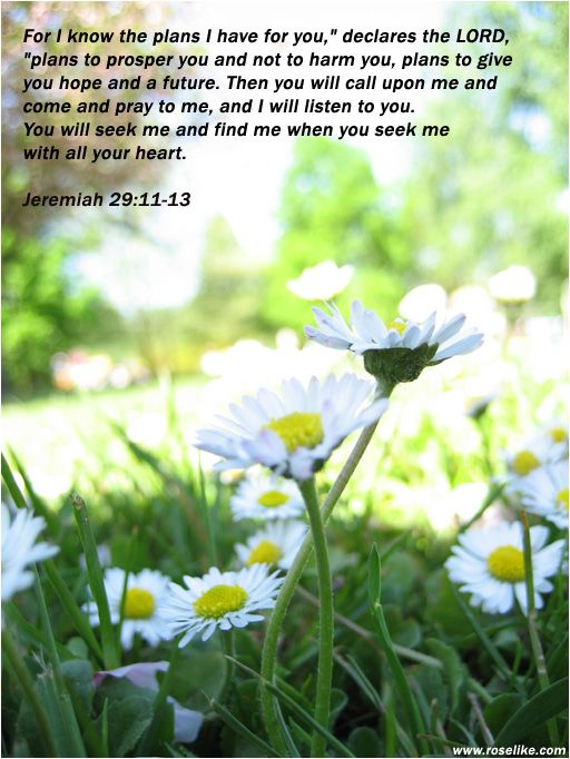 17 best ideas about jeremiah 29 11 13 on pinterest - Jer 29 11 kjv ...