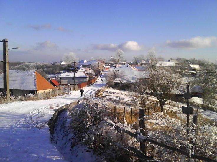 Romanian village in winter