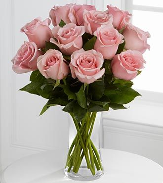 Pink roses! <3